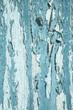 Abgeblätterte Farbe in Blau: Holz Hintergrund alt