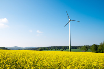 Blue sky, yellow rapeseed and a windwheel in Germany
