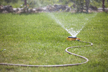 sprinkler spraying water on the grass