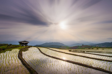 landscape of Rice Terrace at Maechaem in Thailand