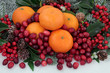 Christmas Fruit - 67147914