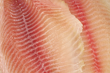fresh fish fillets abstract background