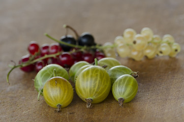 Gooseberry with white, red and black currant