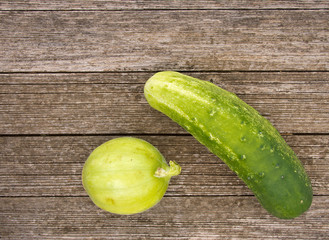 Traditional and round cucumbers on bench