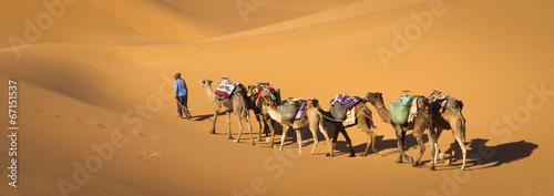 Papiers peints Maroc Desert caravan