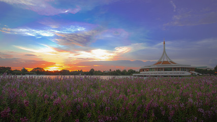 Before sunset at Suanluang Rama 9, Bangkok Thailand