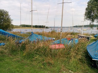 Yachts overgrown by long grass