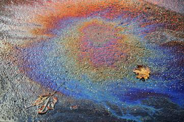 Ölfleck mit Herbstlaub