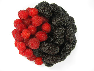 Red raspberry and dark mulberry. Yin Yang