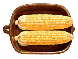 rustic golden raw uncooked corncob