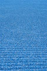 砂の波模様