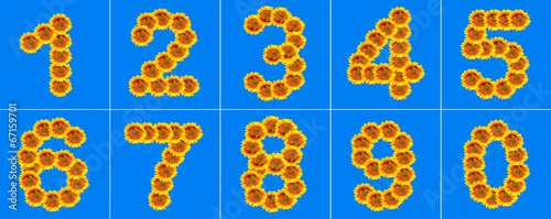 canvas print picture Sunflower number collection