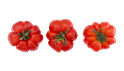 Organic, farm produced costaluto tomatoes, isolated on white.