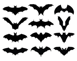 Black silhouettes of bats, vector