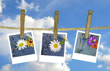 daisy photo on clothesline