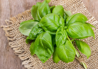 basil  on wooden background