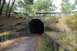 Leinwanddruck Bild - Tunnel für Fahrradfahrer in Lacanau Ozean