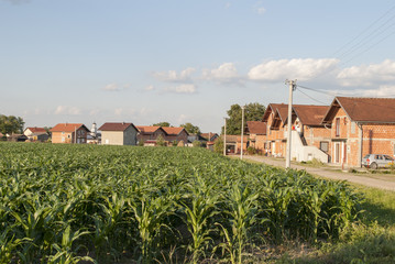 Cornfield & Houses Under Construction