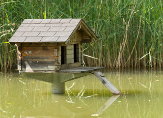 Haus für Wasservögel