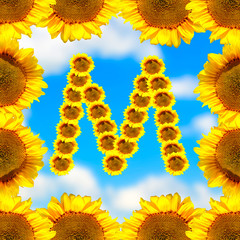 Sunflower letter M