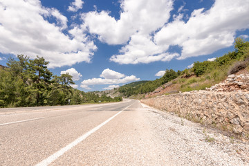 road  with pines and cloudy sky in aegean region of Turkey