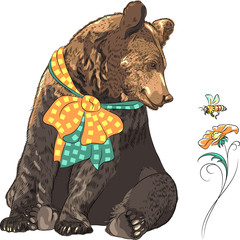 Vector funny hipster bear watching bee