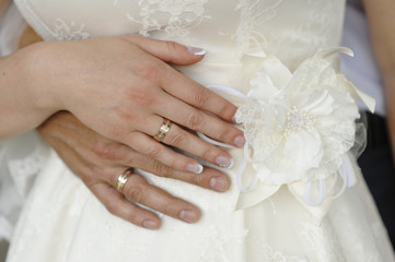 hands of the bride and groom with rings on a white dress