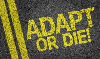 Adapt or Die written on the road