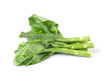 Chinese kale vegetable on white