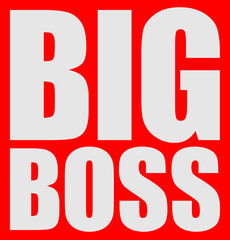 Cool Big Boss Logo Design