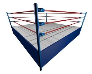 Corner wrestling