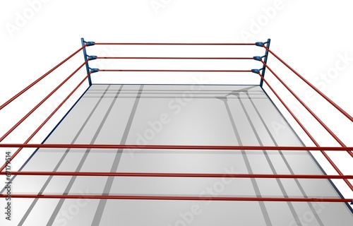 Poster Vechtsport Combat wrestling
