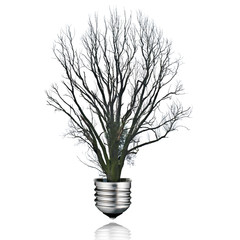 save energy concept,withered tree light bulb