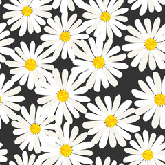 Seamless daisies vector pattern