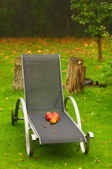 Autumn red apples on chair in garden