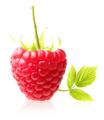 Red berry raspberry isolated