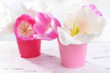 Beautiful tulips in bucket on table on light background