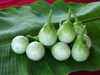 Small green eggplant