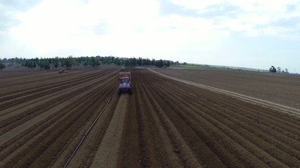Tractor works on the Potato field