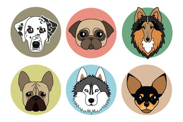 vector icons of different breeds of dogs