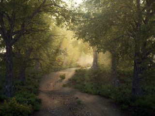 Mysty forest path