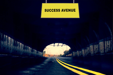 Success Avenue, Concept