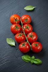 Red tomatoes and green basil leaves over black wooden background