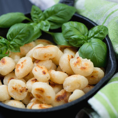 Close-up of roasted italian gnocchi with fresh green basil