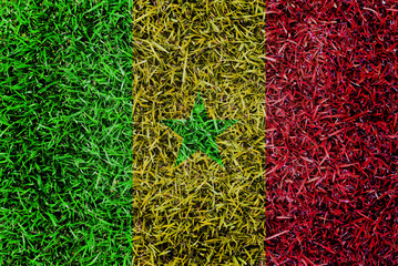 Senegal Flag color grass texture background