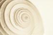 Leinwanddruck Bild - abstract snail spiral