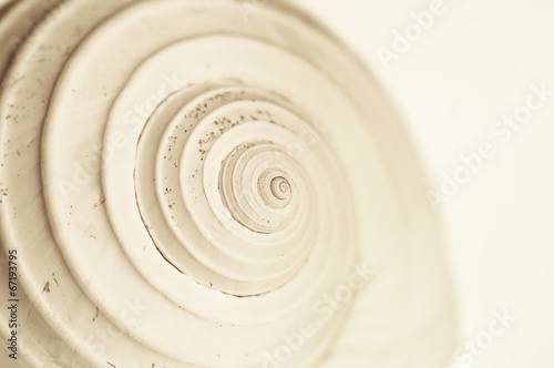 abstract snail spiral - 67193795