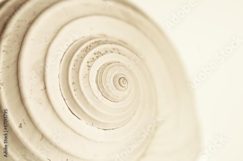 Leinwanddruck Bild abstract snail spiral
