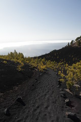 La route des Volcans , ile de la Palma, Canaries