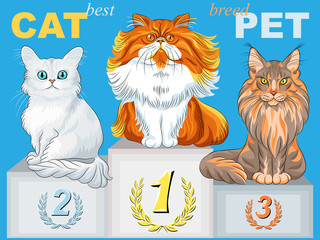 vector cute fluffy cat champion on the podium
